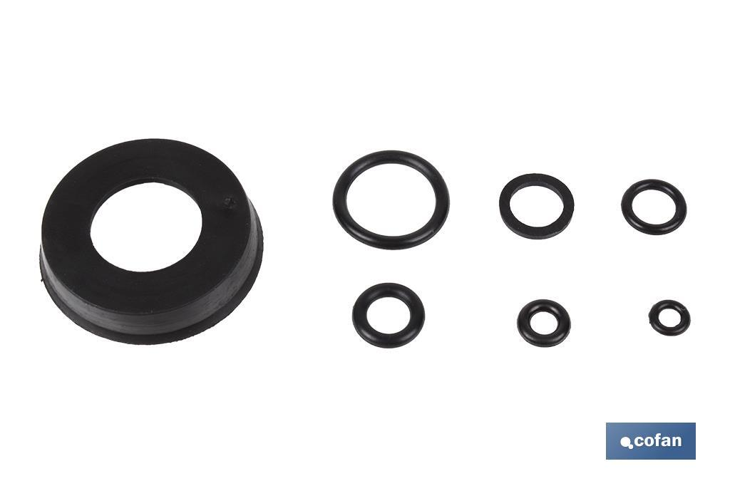 KIT JUNTAS TORICAS (Plunger Cup and O-rings) (PACK: 1 UDS)