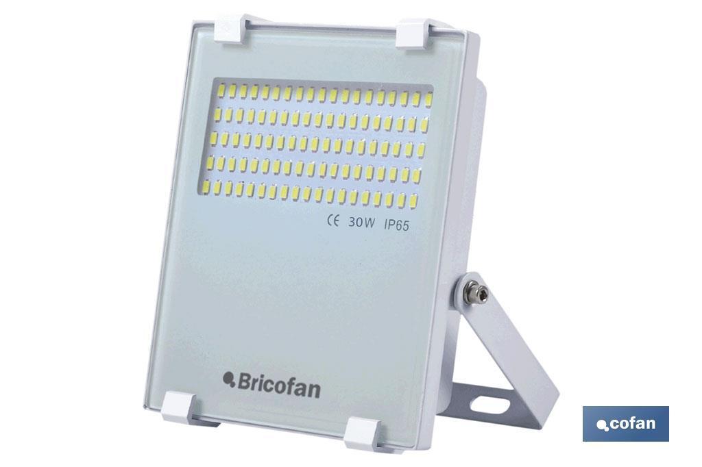 Proyector MULTI LED 30W Blanco